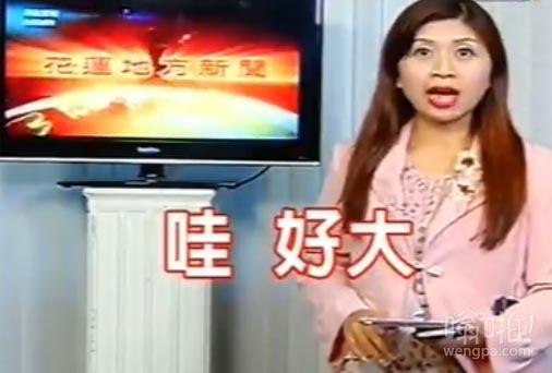"""【视频】哇,好大:台女主播播新闻途中遭遇地震 目瞪口呆惊呼""""好大"""""""