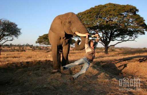 在非洲是这样荡秋千的