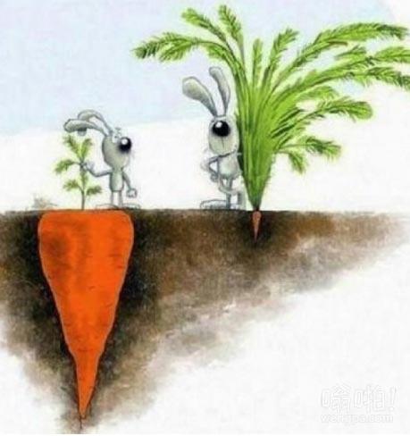 成功并不总是你所看到的