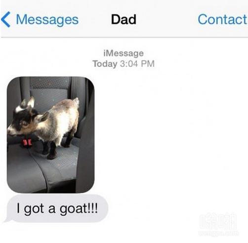 我得到了山羊