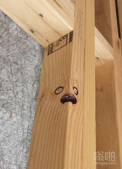 有表情的木头
