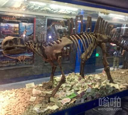 给恐龙骨架塞钱,几个意思?