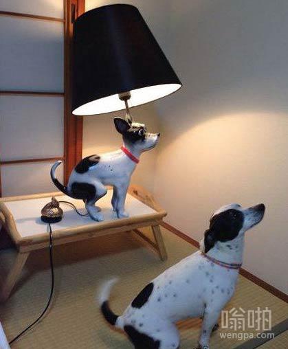 这灯是照着我做的,你看像么