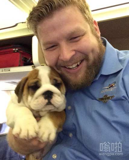 这狗是今天在飞机上最火的乘客