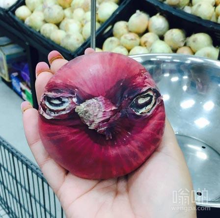 这种洋葱看起来就像愤怒的小鸟