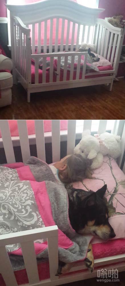 妈妈去检查她的宝宝 发现救援犬和她在婴儿床午睡