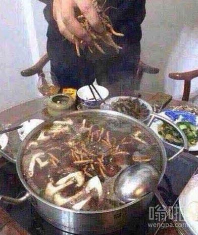 吃个火锅这么任性