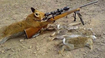 二汪狙击手