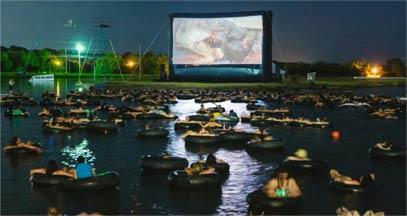 我想不出更好的方式来观看大白鲨。