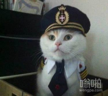 请大家系好安全带,飞机接下来将会遇到气流会比较颠簸