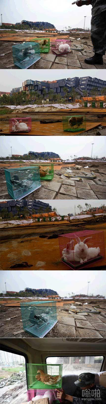天津爆炸核心区还能不能住人就靠它们了