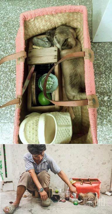 越南流浪擦鞋人和他的小盲人朋友