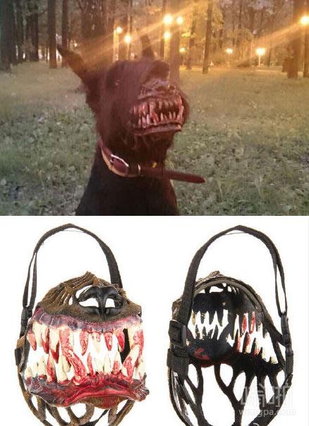 俄罗斯狗面具 保护晚上遛狗胆小的你
