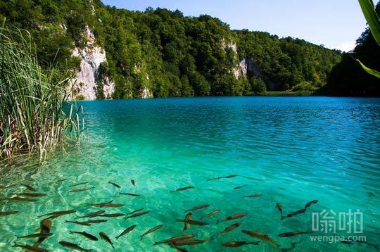 普里特维采湖,克罗地亚 很高的期望去那里,没有失望!
