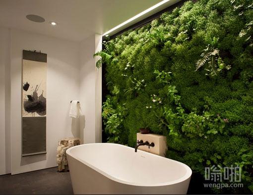 充满植物的浴室墙面