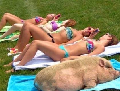就喜欢和美女们在沙滩上沐浴阳光