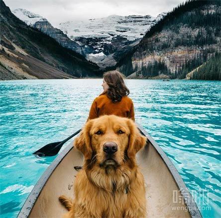 加拿大皮划艇和狗的探险
