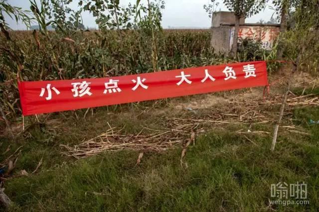 河南打击焚烧秸秆 雷人标语