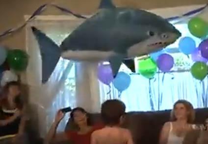 【视频】遥控气球鲨鱼 这么高大上的玩具!好想要一个!