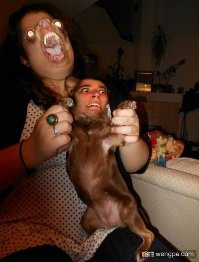 狗狗搞笑图片 将狗狗和主人的脸调换以后 画风变了