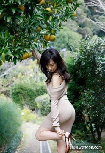 采橘东篱下