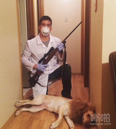 cosplay猎杀非洲狮王的美国医生