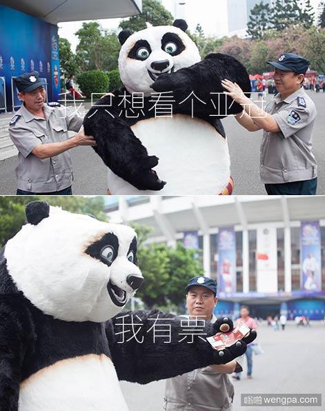 """【视频】""""动物不准入内!"""" 功夫熊猫看亚冠遭拒"""