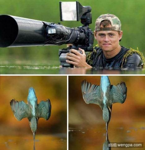 翠鸟如水的照片是这样拍出来的