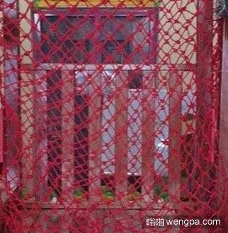 专业网红揭秘 我是网红专 业网红20年
