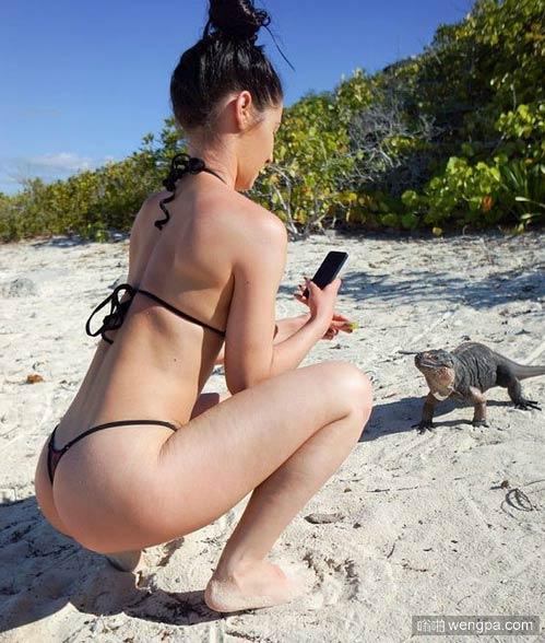 美女内涵图 谁知道这是什么蜥蜴