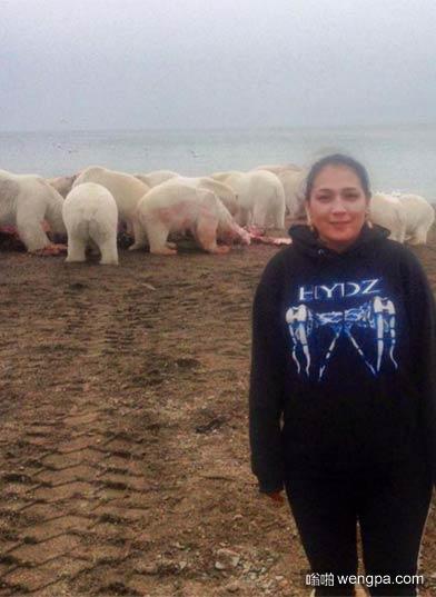 最危险的自拍 背后一群北极熊正在分食鲸鱼尸体