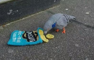 那袋子有食物吗