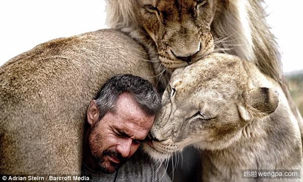 狮子蟒蛇豹子老虎熊 与世界上最危险的动物一起生活