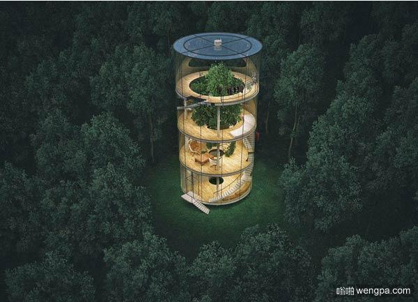 林中圆形透明房子 享受高质量的孤独