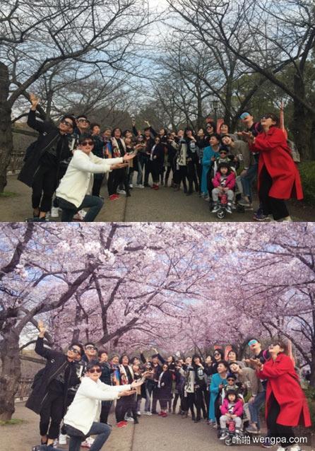 我的朋友们去日本看樱花_ps - 嗡啪搞笑图片