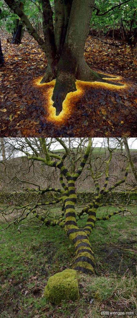 艺术家给树加工一些色彩后画风瞬间变了