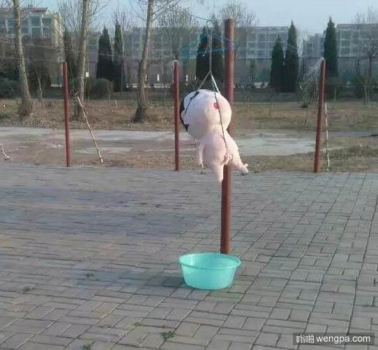 早晨起来晒被子 偶遇被吊起的小新