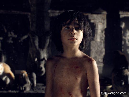 《奇幻森林》10岁男孩演技上天了 全程和空气对戏