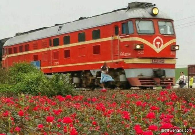 女孩拍花海被火车撞击身亡 撞击瞬间照片 - 嗡啪社会