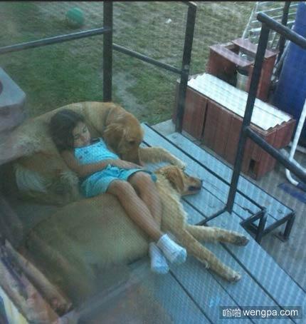 这纯天然狗毛沙发舒服 还带座椅加热的