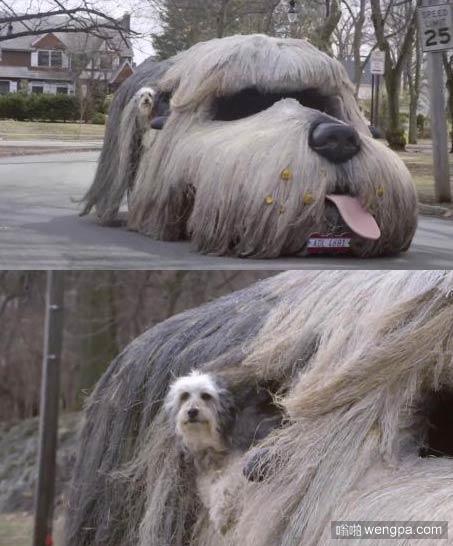 汪星人的狗头车 很拉风吧-嗡啪搞笑图片