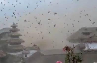 【视频】监控视频记录地震瞬间 尼泊尔地震监控视频-嗡啪视频