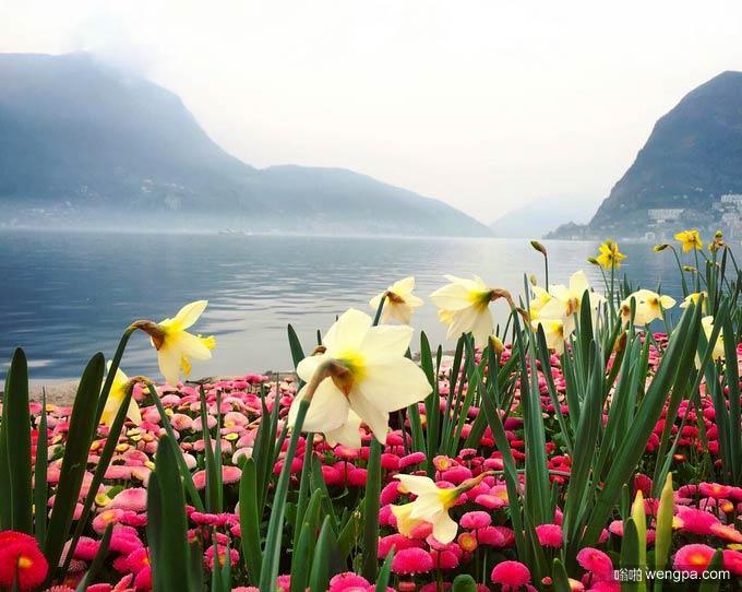 瑞士卢加诺植物园