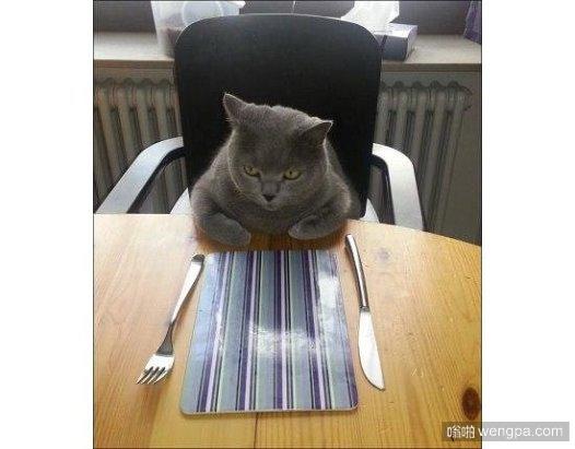 当你下班,各种堵车、饿、累,只想回家坐在桌子边等着妈妈端上来的美味