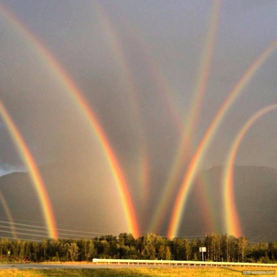 彩虹,你喝醉了,回家去 什么叫彩虹泛滥-嗡啪搞笑图片