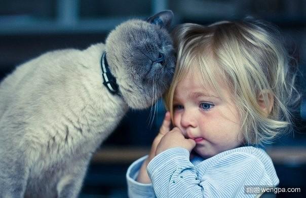 猫安慰小女孩可爱图片 别担心!一切都会好起来!-嗡啪萌宠图片