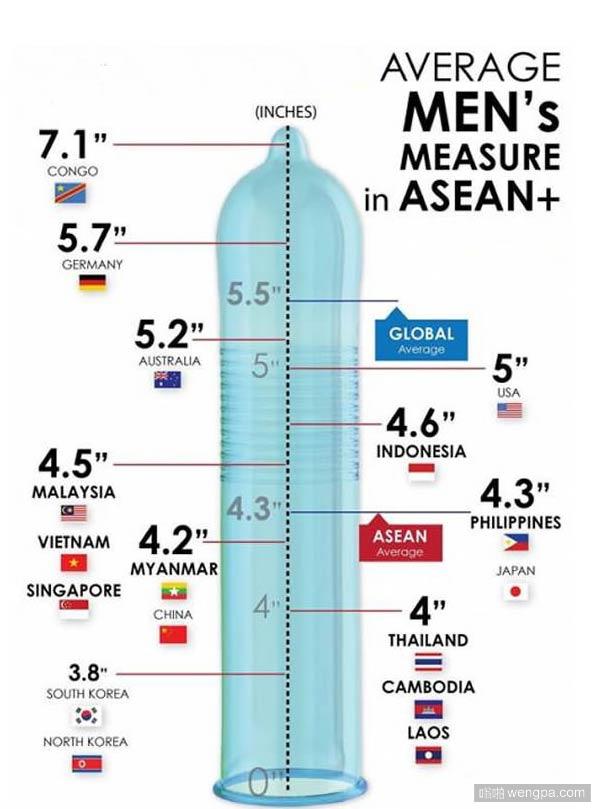 世界各地男性丁丁长度一览