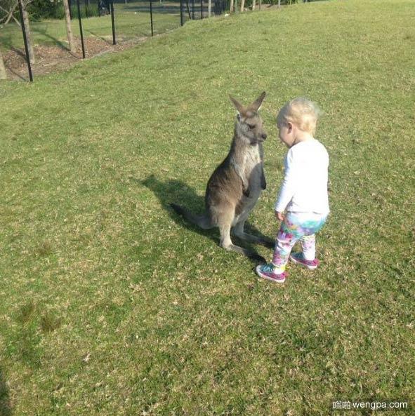 忍不住笑我的侄女今天在动物园结交的新朋友