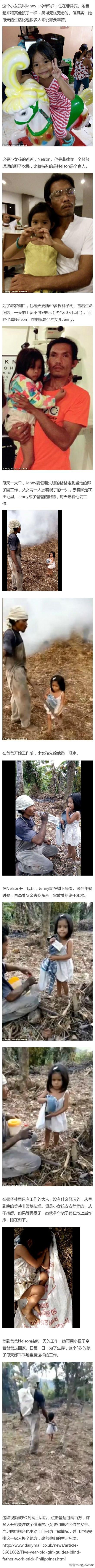 菲律宾5岁的小姑娘每天用陪着失明的爸爸去椰子林工作