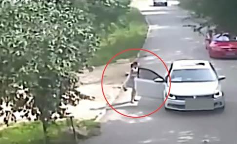 【监拍】北京八达岭野生动物园老虎咬死人视频 女子下车被老虎叼走1死1重伤